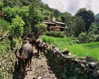 nepal_7