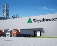 weyerhauser_1